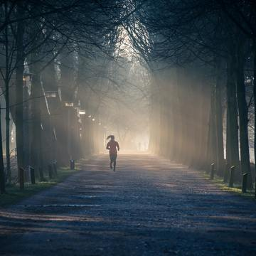 Small backlit exercise fog 878151